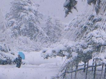Kenrokuen snow man with umbrella