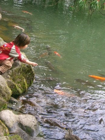 Kenrokuen child with carp